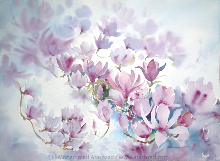Blooming Magnolias.2017, Watercolour on paper 30x22in, by Mohammad Reza Atashzad