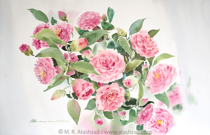 Spring Camellias, 2018, Watercolour on paper 38 x 56, by M. R. Atashzad